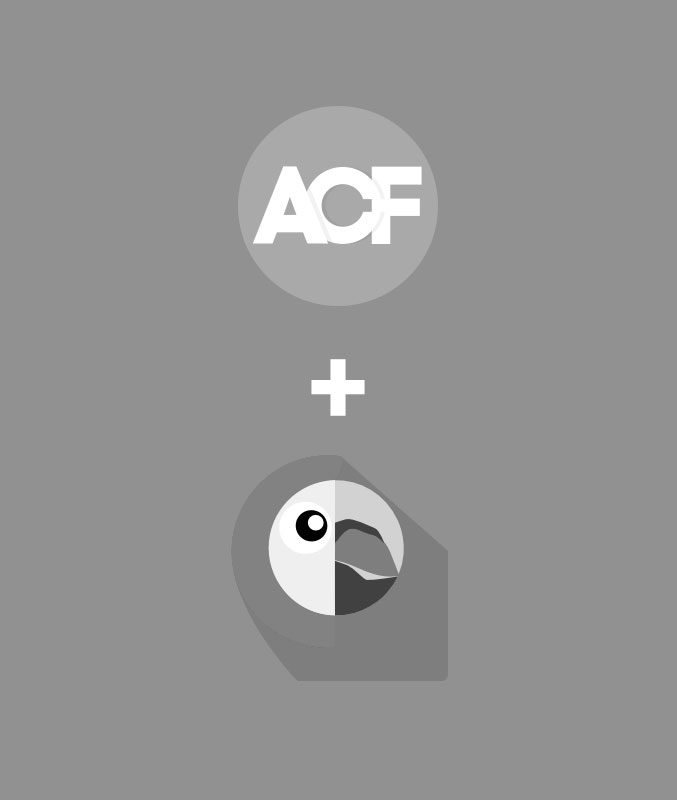 Advanced Custom Fields (ACF) Options Page and Polylang - Mackey
